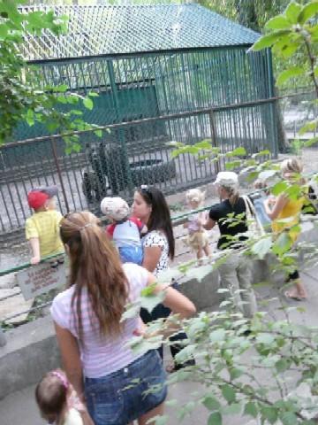 Kleine und große Bären: Odessas Zoo